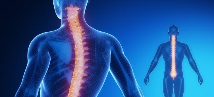chiro-back-pain